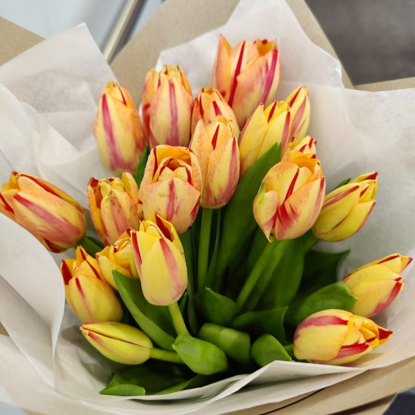 The Market Bunch - Tulips
